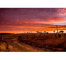 Sunset, Hill End Photographic Print
