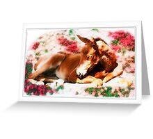Callisto's Nap Greeting Card
