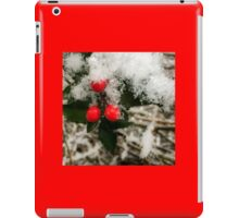 Winter Berries iPad Case/Skin