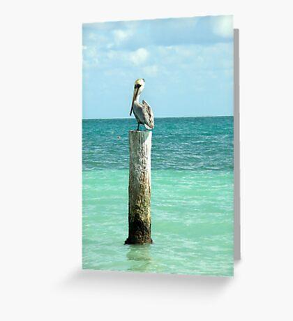 pelican post Greeting Card