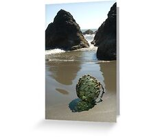 Glass Float with Net Greeting Card