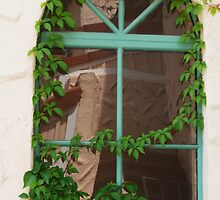 The Old window by Peri