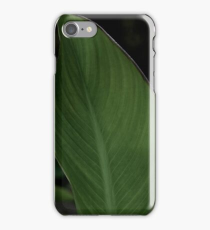 Green Plant in the Garden iPhone Case/Skin