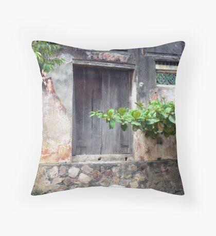 Old door in Hoi An, Vietnam Throw Pillow