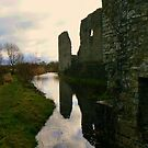 Trim Castle's grounds by Finbarr Reilly