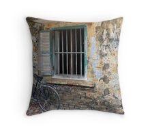 Hoi An window and stained wall. Throw Pillow