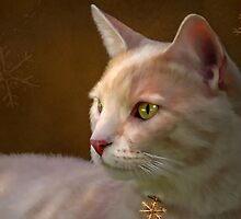 Charmed ... Tabby Cat Portrait by Renee Dawson