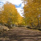 Autumn Country Road by Pendragon-Art