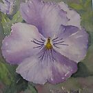 Pansy face by Susan Moss