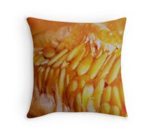 Just the Seeds:  Cradled Throw Pillow