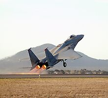 McDonnell Douglas  F-15  EAGLE  by aircraft-photos