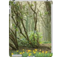 Mythical Place HDR iPad Case/Skin