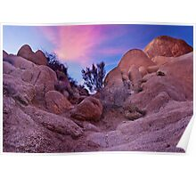Dusk at Joshua Tree Poster