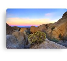 Sunset at Joshua Tree Canvas Print