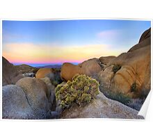Sunset at Joshua Tree Poster