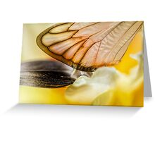 Cling to Spring Greeting Card