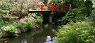 Heart Bridge Reflection by Tori Snow