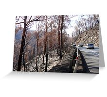 After the Fires. Greeting Card