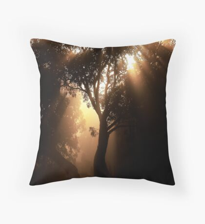 Sunrise & Mist Throw Pillow