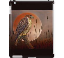 Red Tail Hawk At Rest iPad Case/Skin
