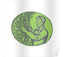 Orchardist Trimming Plum Tree Oval Etching Poster