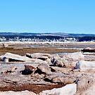 Beached Ice II by Kathleen Daley
