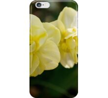 Colors of Spring iPhone Case/Skin