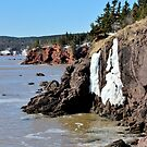 The Icy Cliffs by Kathleen Daley