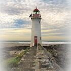 To the lighthouse by Jan Pudney
