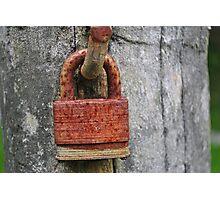 Crippled Lock Photographic Print