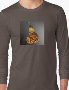 DECOMPOSING PEAR ON GLASS Long Sleeve T-Shirt