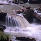 Woodland Creek Below The Falls by Geno Rugh