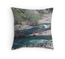 American River Throw Pillow