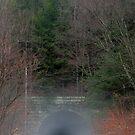 Allegheny Bike Trail Tunnel by Geno Rugh