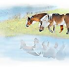 Reflection by FirstHorse