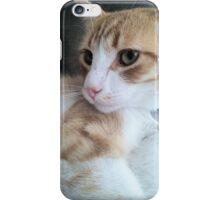Deep Green Ginger iPhone Case/Skin