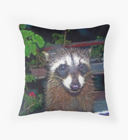 OK, SOZE YAZ COT ME AREDY, NOW WAT? Throw Pillow
