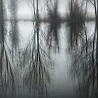 Grey Solitude by Karen Scrimes