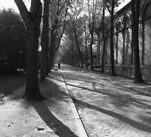 Pere-Lachaise Cemetary by Tony Dempsey