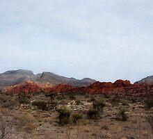 Red Rock Nevada by Jarede Schmetterer