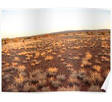 outback dawn Poster