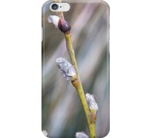 Rain pearls iPhone Case/Skin