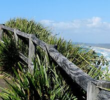 Walking Track Fence Byron Bay N.S.W  Australia by Sandra  Sengstock-Miller