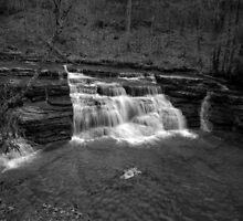 Campbells Falls (Monochrome) by Jason Vickers