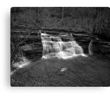 Campbells Falls (Monochrome) Canvas Print