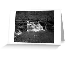 Campbells Falls (Monochrome) Greeting Card