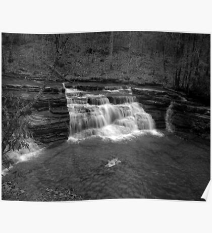 Campbells Falls (Monochrome) Poster