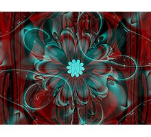 Floral Holiday Magic Photographic Print
