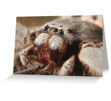 Huntsman Spider Greeting Card