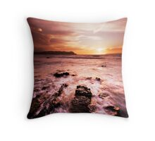 Chocolate Diving Board Throw Pillow